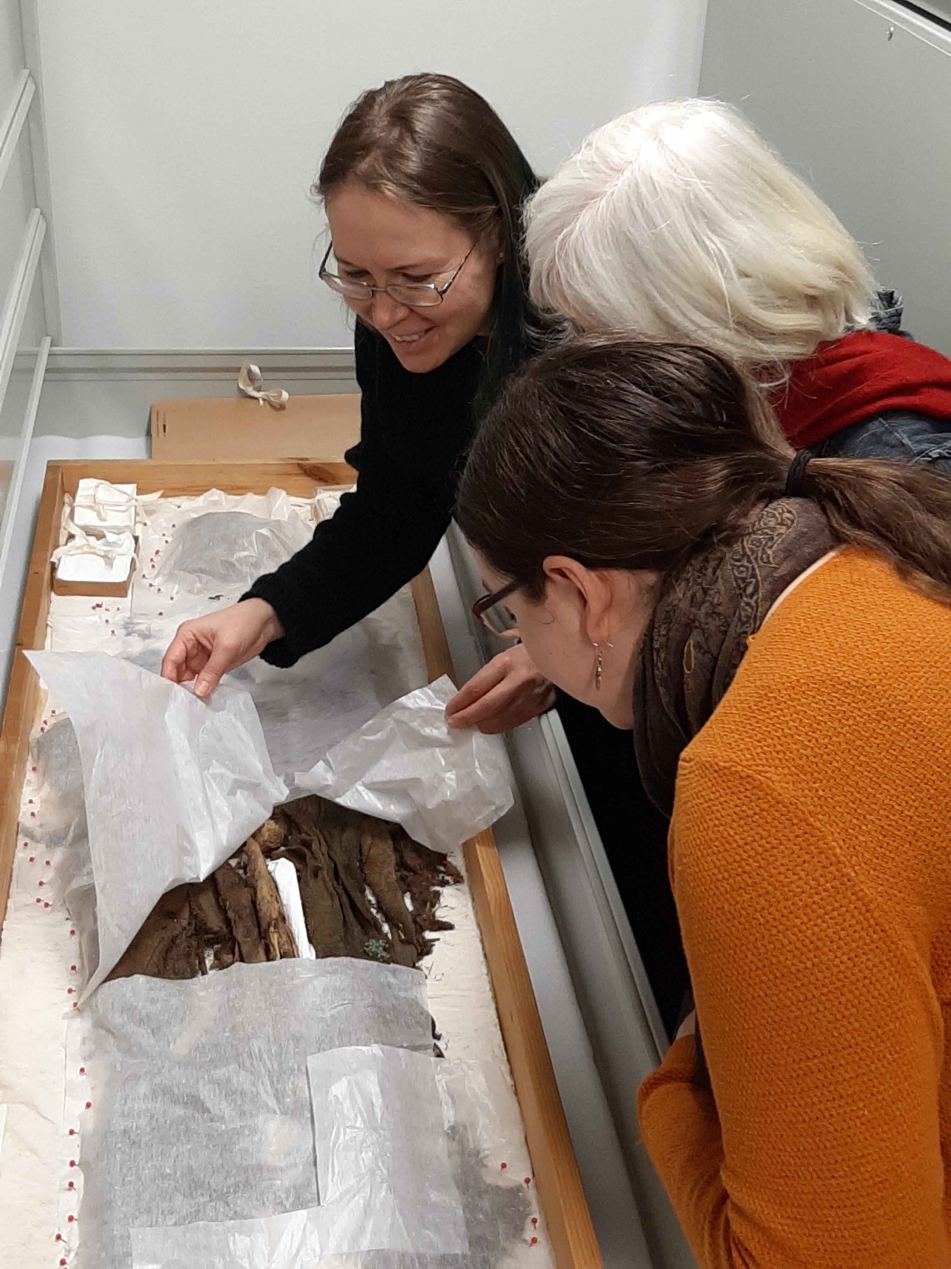 Uusia koruaarteita esiin – merkittävä apuraha Kalevalaisten Naisten Liiton tutkimusprojektiin